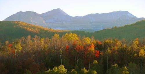 Timpanogos Fall Colors