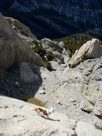 Wallace Canyon