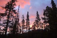 Campsite near Quandary Trailhead
