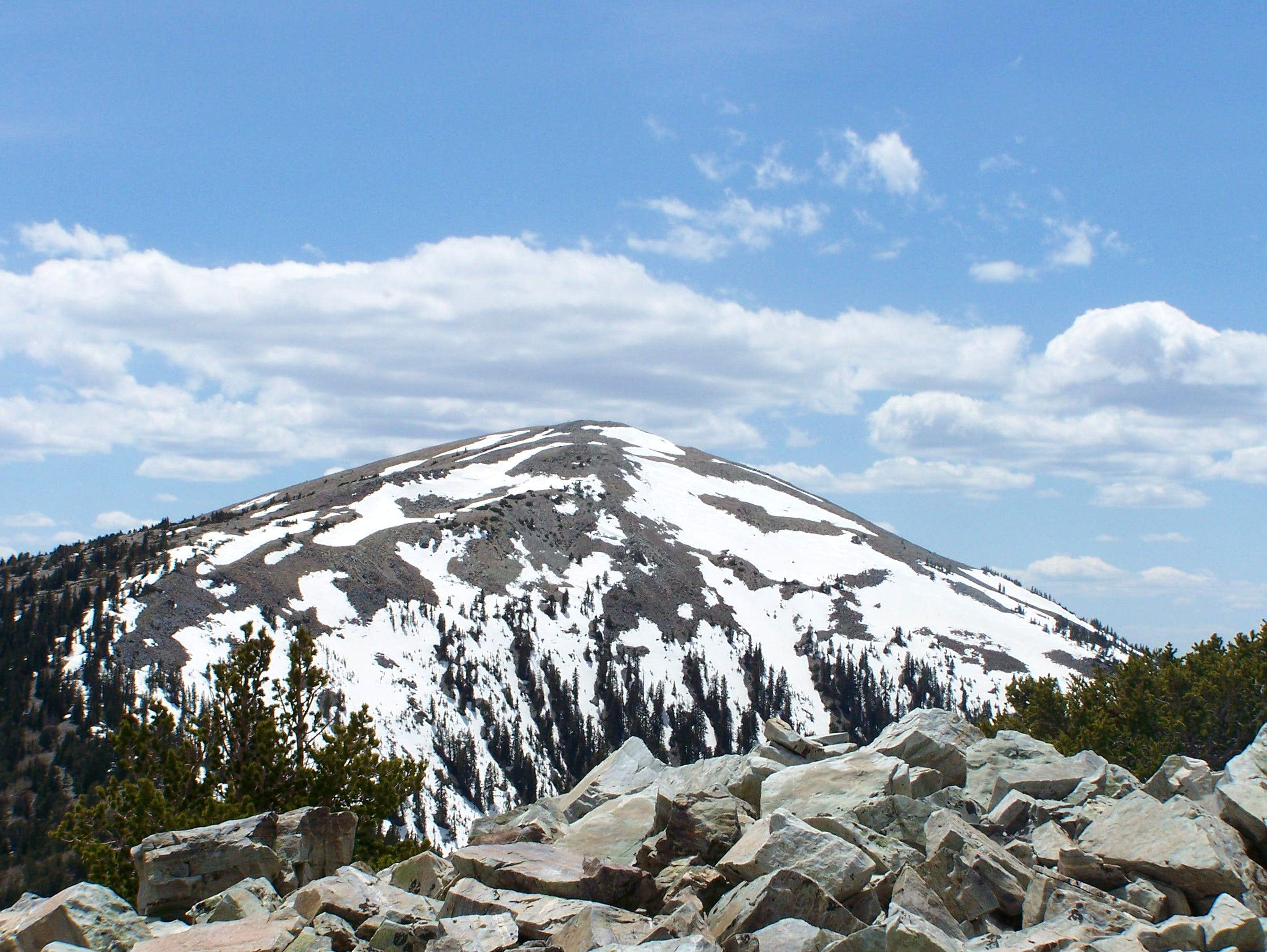 Bald Mountain (NV)