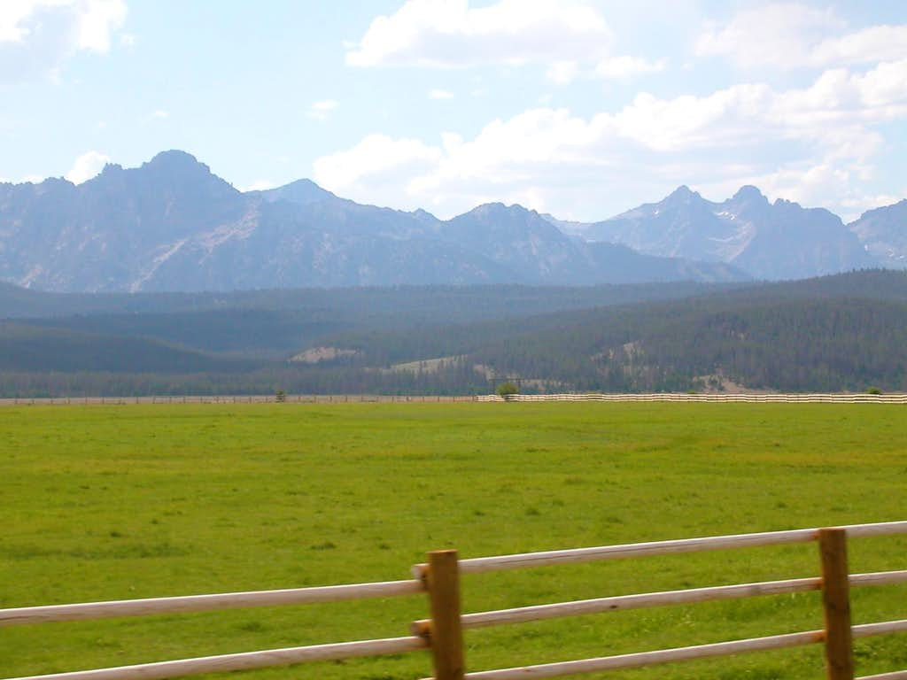 Cow Pasture in the Sawtooths
