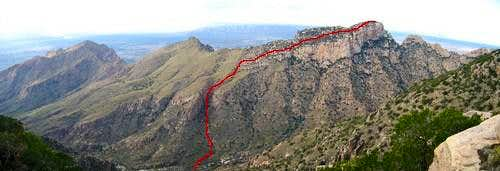 Table Mountain Hiker s Route