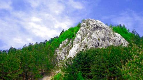Cicarija - Brajkov vrh