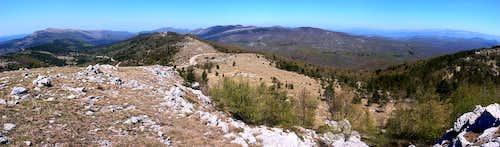Cicarija - panorama