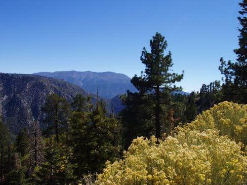 View towards San Bernardino Peak