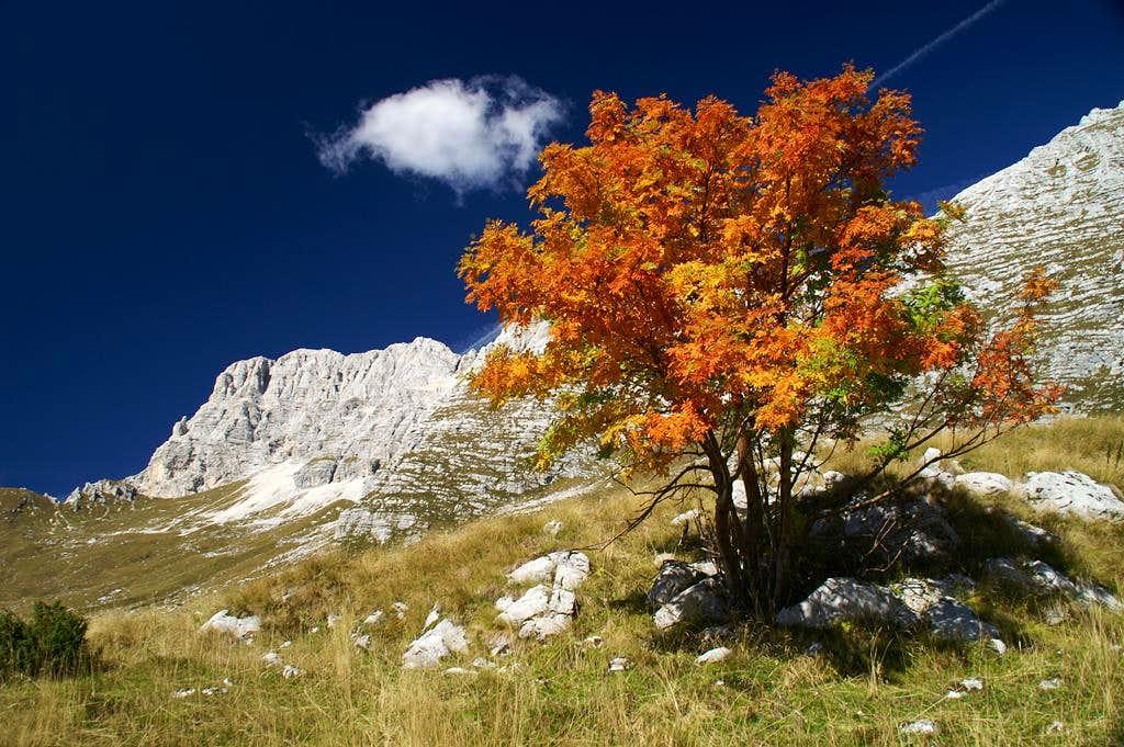 Jôf di Montasio in Autumn