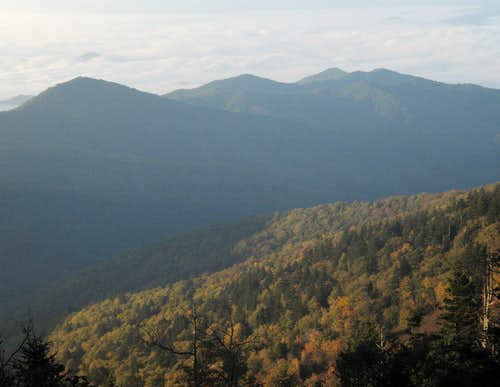 Silers Bald-- Trail View