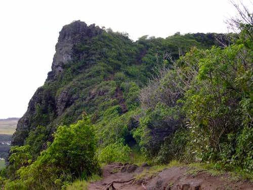 The summit ridge (highpoint...