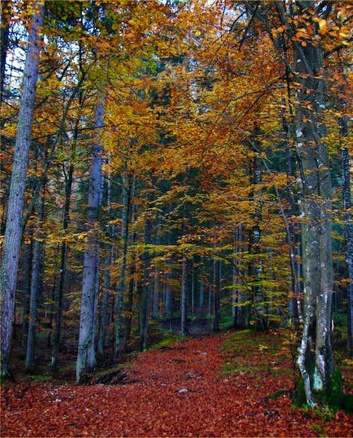 Beautiful Autumn colors in Martuljek group.