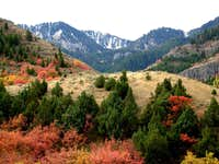 Logan Canyon