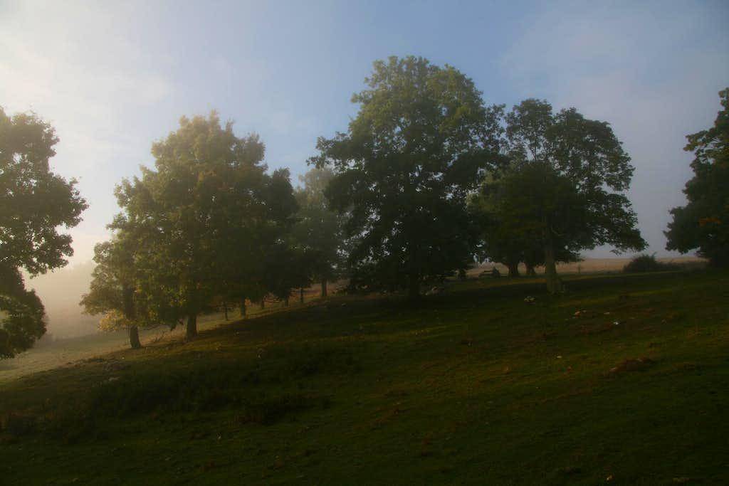 Misty Blue Ridge Sunrise