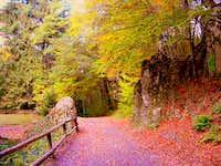 Fall in Bükk National Park, Hungary