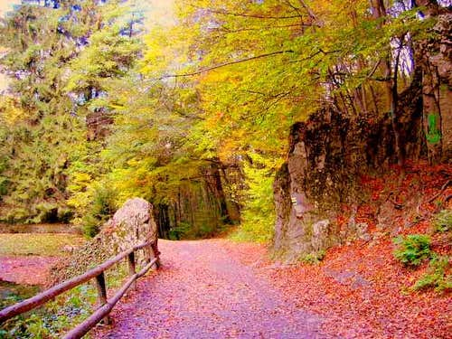 Fall in Bükk National Park, Hungary