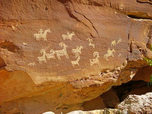 Ute's petroglyphs.