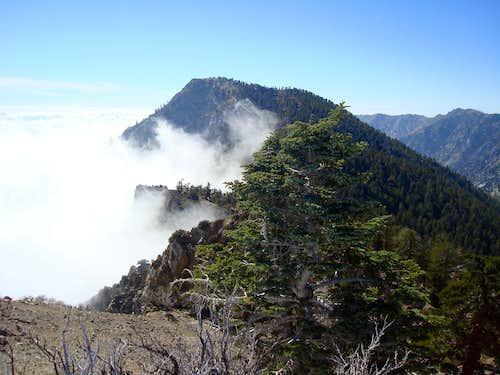 Cucamonga Peak from Etiwanda