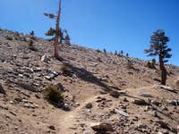 Barren Trail to Jepson Peak