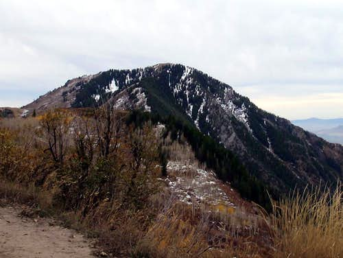 East and North Sides of Buckley Mountain