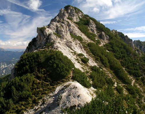 Miezegnot Side Summit
