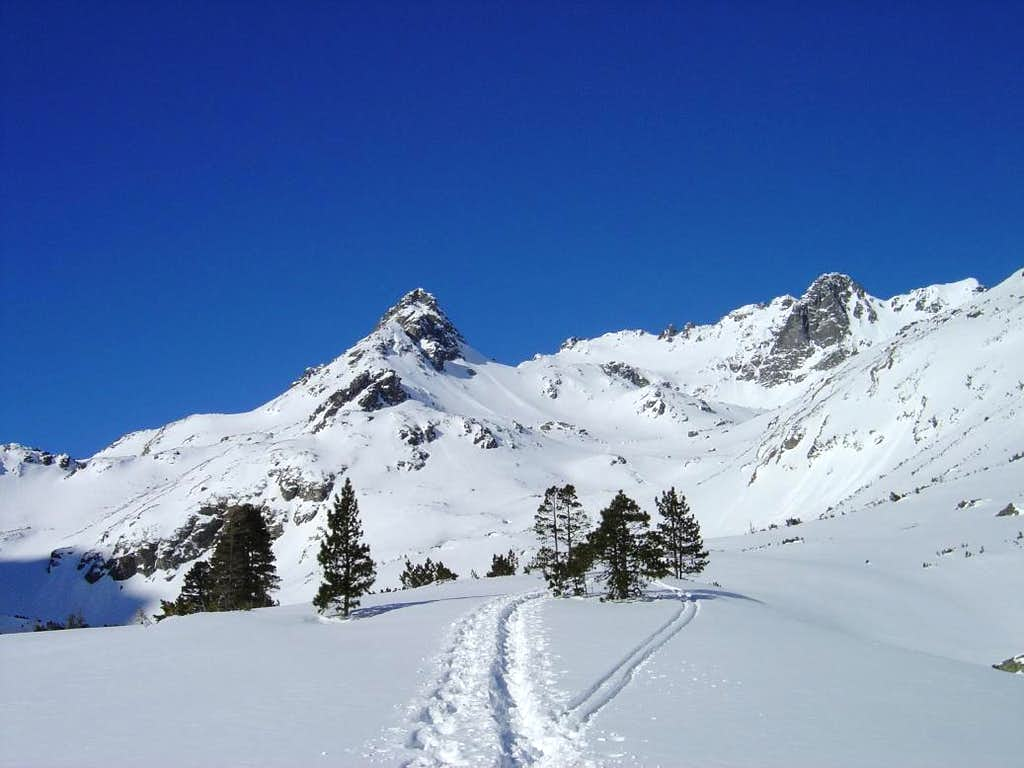 Winter in Mengusovská dolina