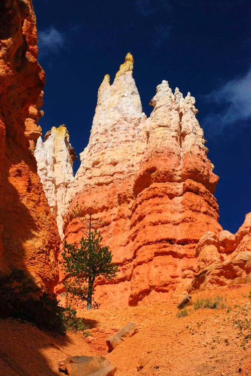 Gold-Capped Pinnacles