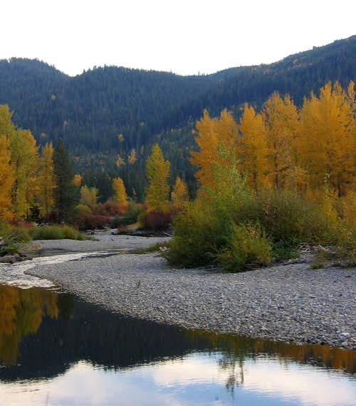 Fall foliage along Rt. 2 east of Stevens Pass
