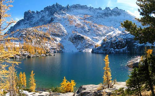 Leprechaun Lake\'s larches