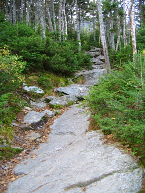 Mt. Mansfield Long Trail