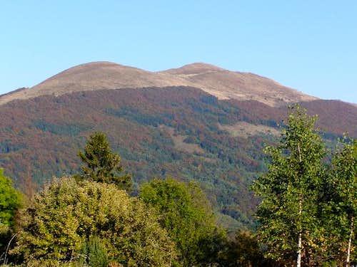 Mount Carynska Meadow (1297 m)