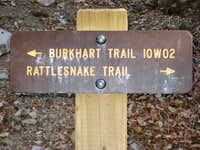 Trail Sign-NOT FOR VOTING