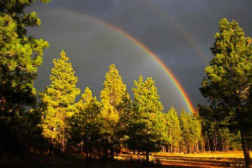 A Sapphire Rainbow