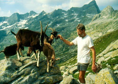Masino Alps, western part