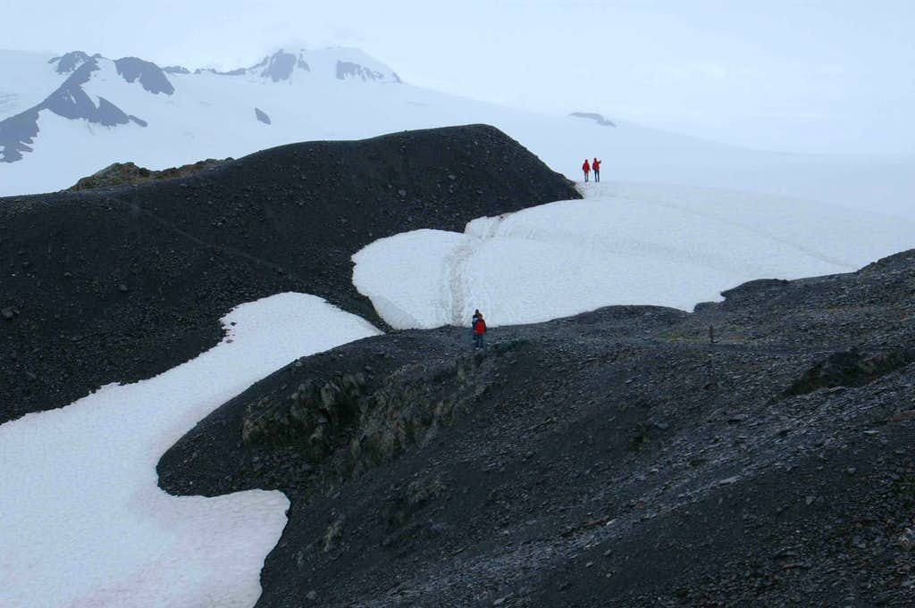 walking out on the glacier