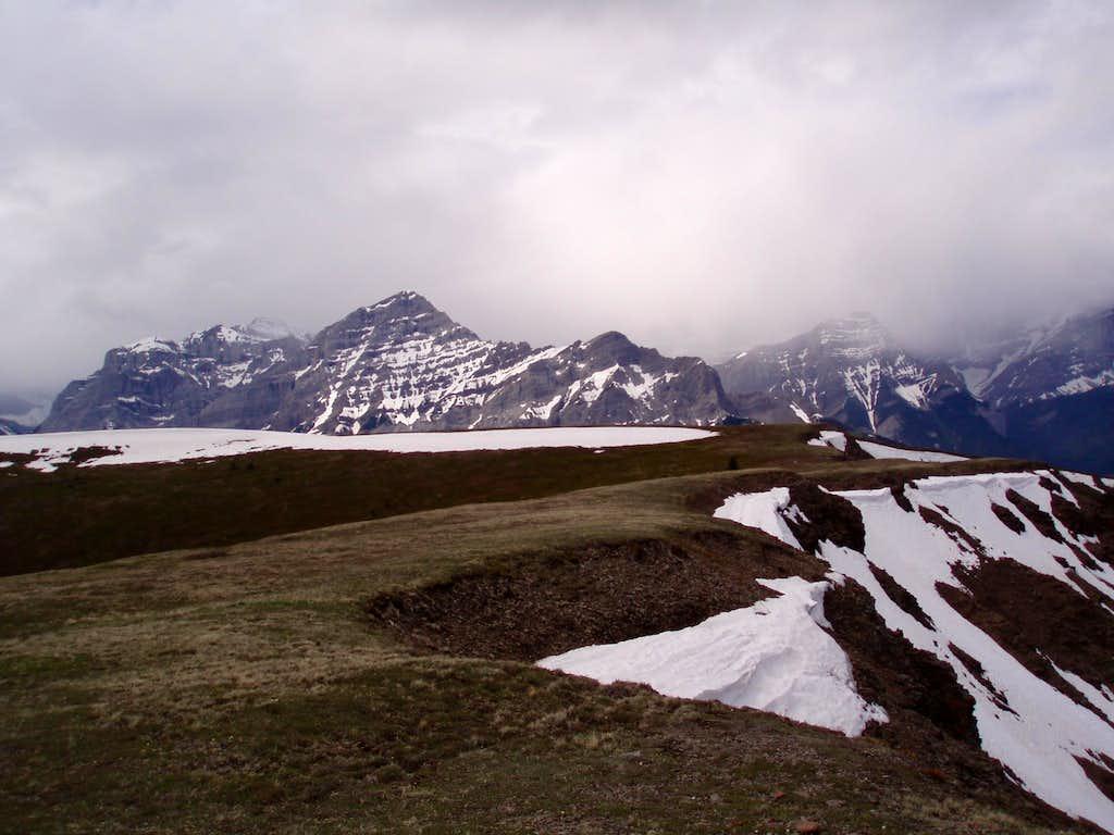 Old Baldy's Large Summit