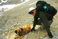 A dog at 5000m.! Looked like...