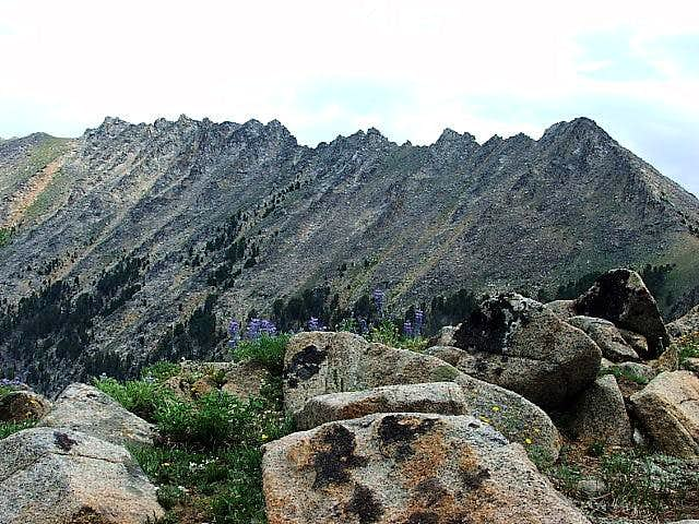 mt baldy black personals South baldy peak is the highpoint of the magdalena mountains it is located in the cibola national forest this tall and dominating mountain towers nearly 6,500' above the nearby city of.