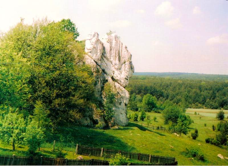 Jura krakowsko Czestochowska