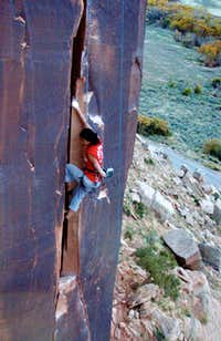 Larissa Climbing