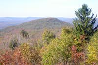 View of 2,667 ft Sugarloaf Knob