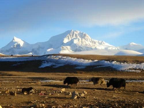 Shisha Pangma 8027m, Tibet