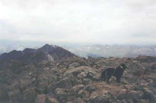 bear on the summit, just us...