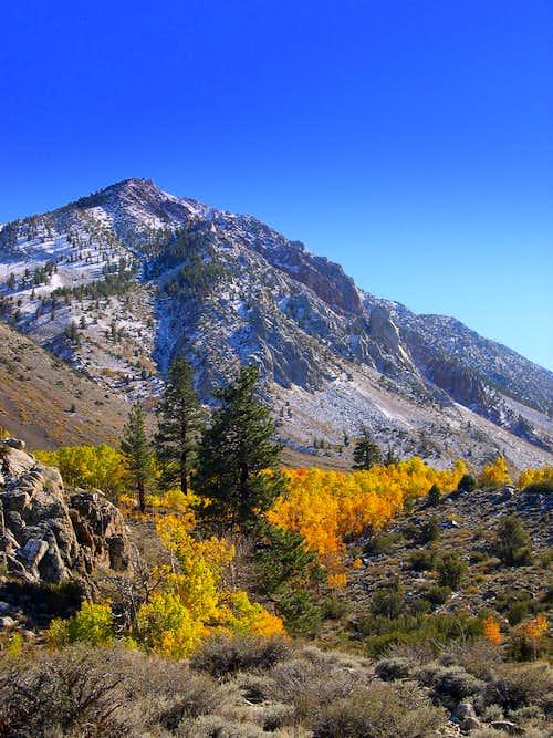 Bishop Creek Autumn