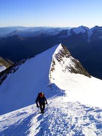 Ascending Nadelhorn NE ridge
