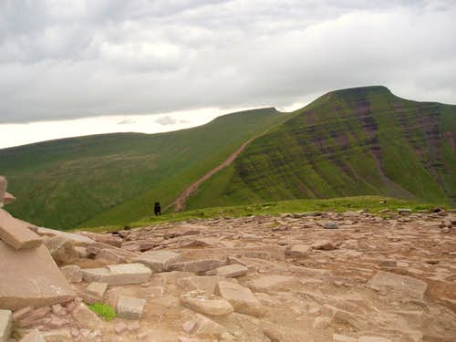 View from Cribyn