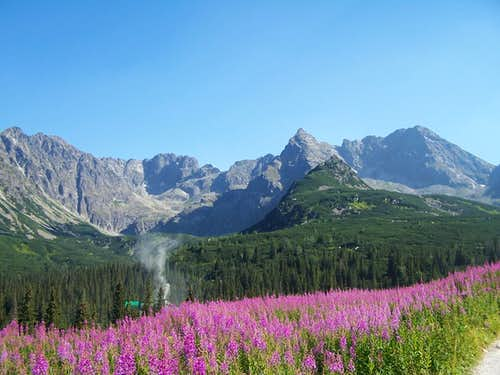 Koscielec-High Tatras5