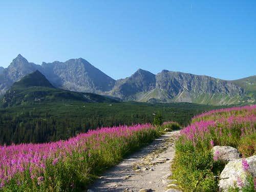 Koscielec-High Tatras 6