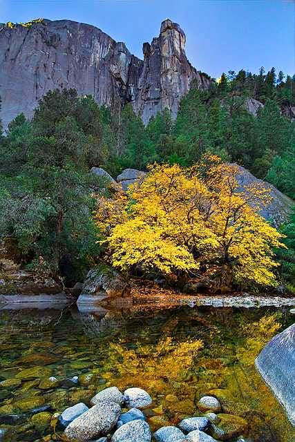 Yosemite NP - The Rostrum, Sunrise and Fall Color