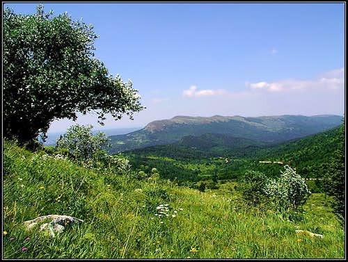 Zbevnica, seen from Gomila