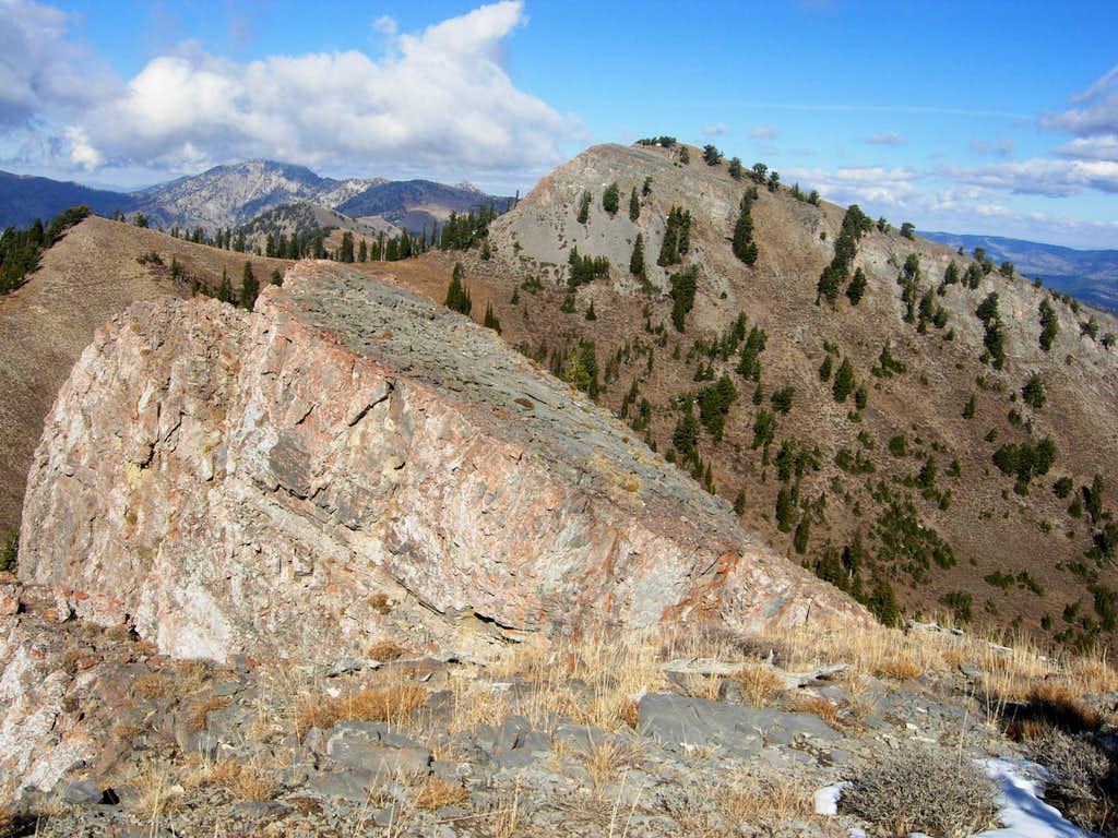 Mount Elmer
