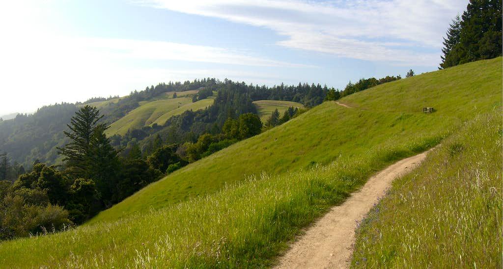 Long Ridge