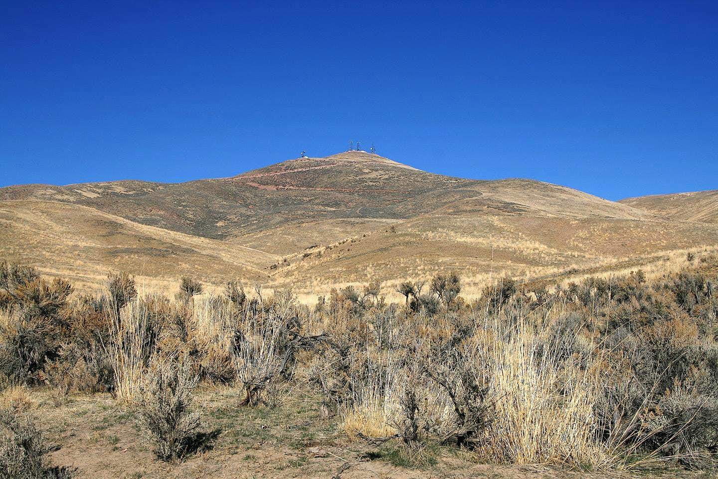 Elko Mountain (NV)